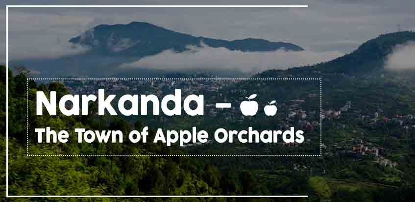 Narkanda – The Town Of Apple Orchards