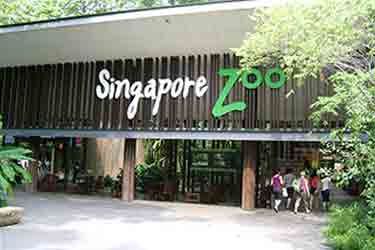 Singapore Sweet Trip